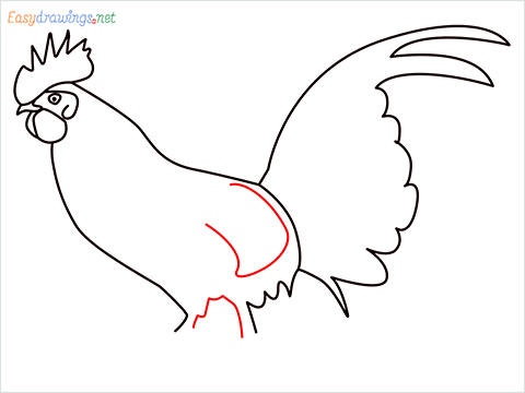 How To Draw A Rooster (cock) Step (9)
