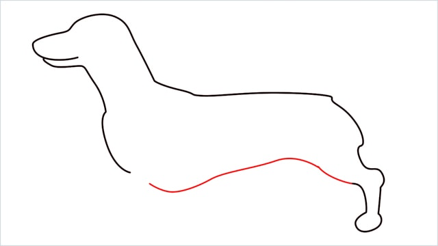 How to draw a Dachshund step (5)