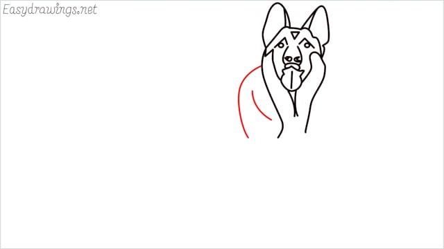 How to draw a German Shepherd step (10)