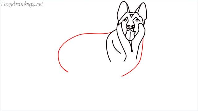 How to draw a German Shepherd step (11)