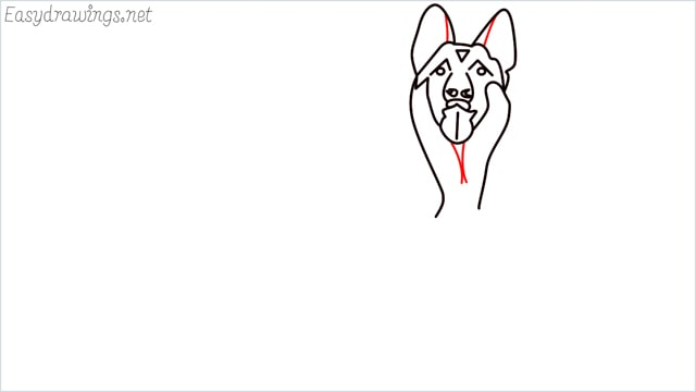 How to draw a German Shepherd step (9)