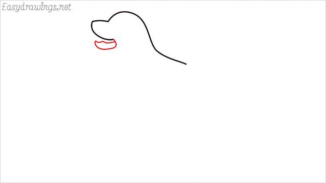 How to draw a Golden Retriever step (3)