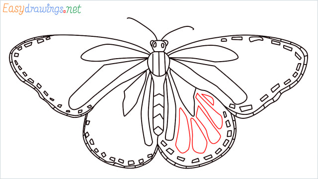 How to draw a Monarch butterfly step (11)