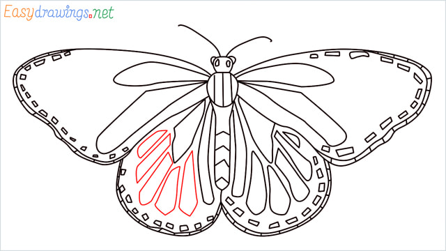 How to draw a Monarch butterfly step (12)