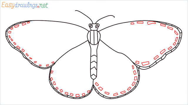 How to draw a Monarch butterfly step (8)