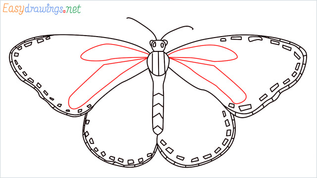 How to draw a Monarch butterfly step (9)
