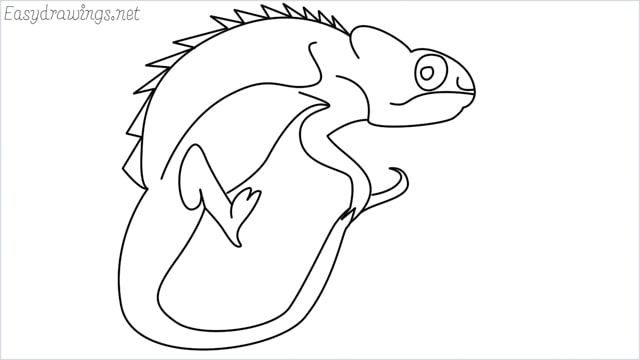 How to draw a Reptile step by step