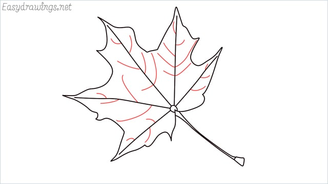 How to draw a fall leaf step (6)