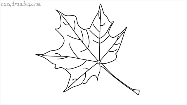 How to draw a fall leaf step by step