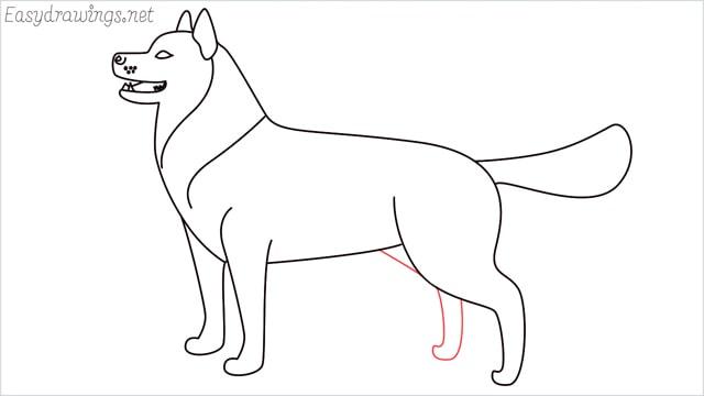 How to draw a husky step (13)