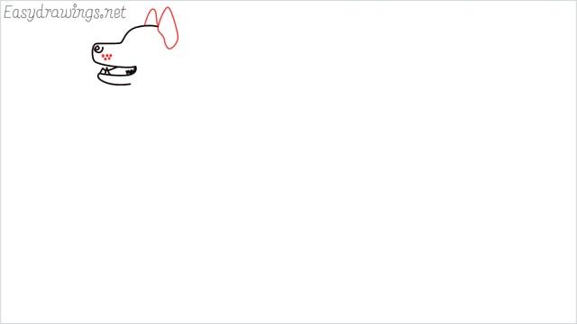 How to draw a husky step (5)