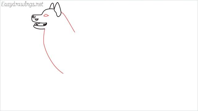 How to draw a husky step (6)