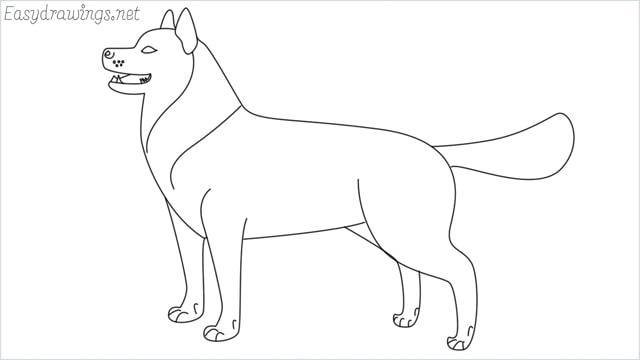 How to draw a husky step by step