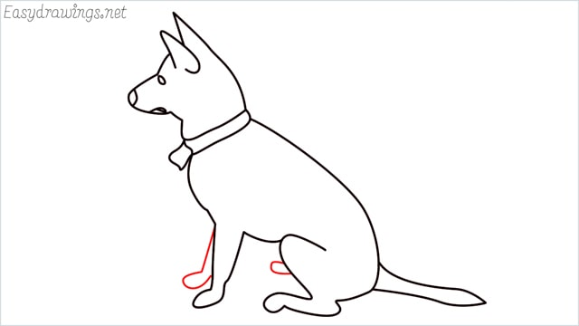 How to draw a my home dog step (10)