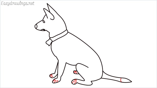 How to draw a my home dog step (11)