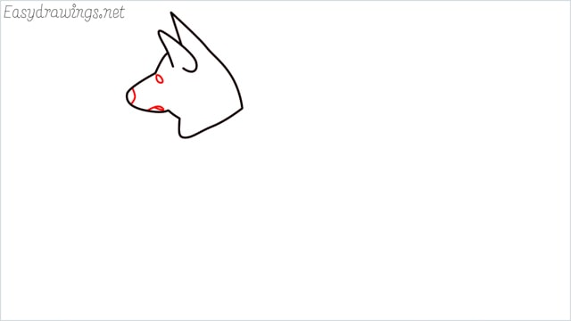 How to draw a my home dog step (4)