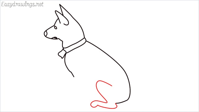 How to draw a my home dog step (7)