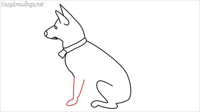 How to draw a my home dog step (8)