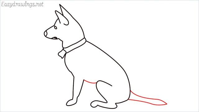 How to draw a my home dog step (9)