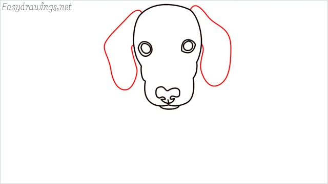 How to draw a puppy step (6)