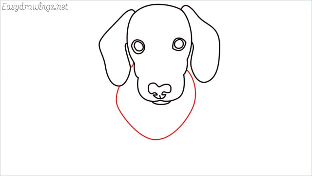 How to draw a puppy step (7)