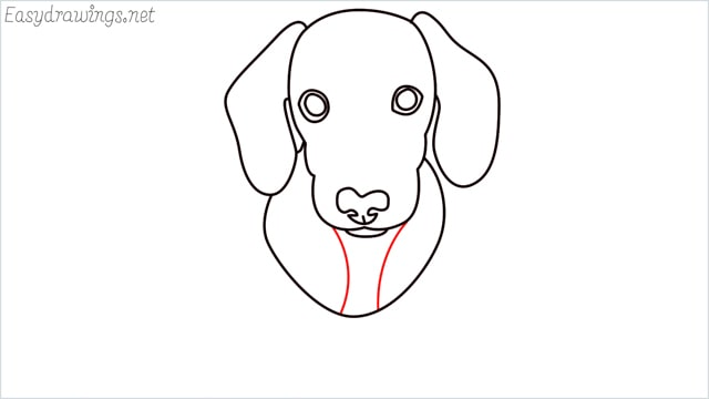 How to draw a puppy step (8)