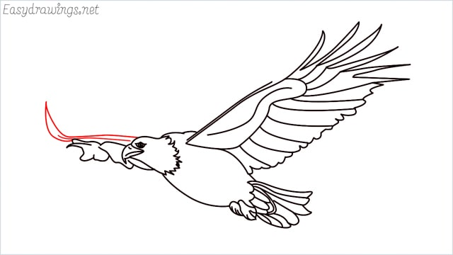 How to draw an eagle flying step (21)