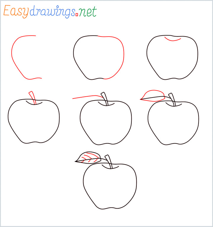 Overview apple drawing