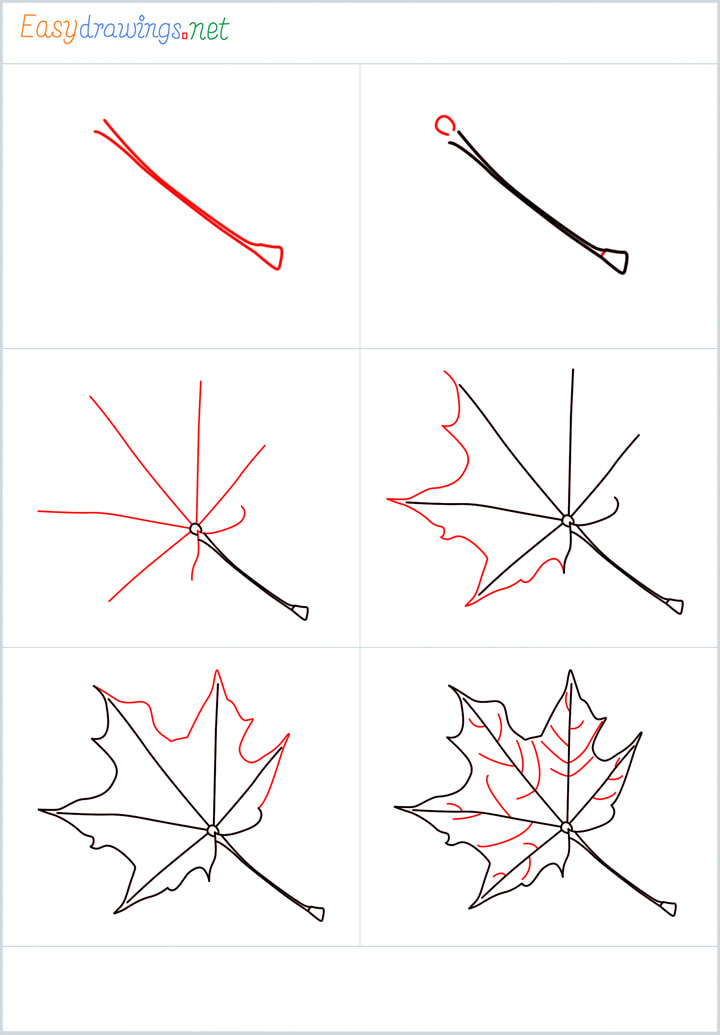 Overview for Fall leaf drawing all steps in one place