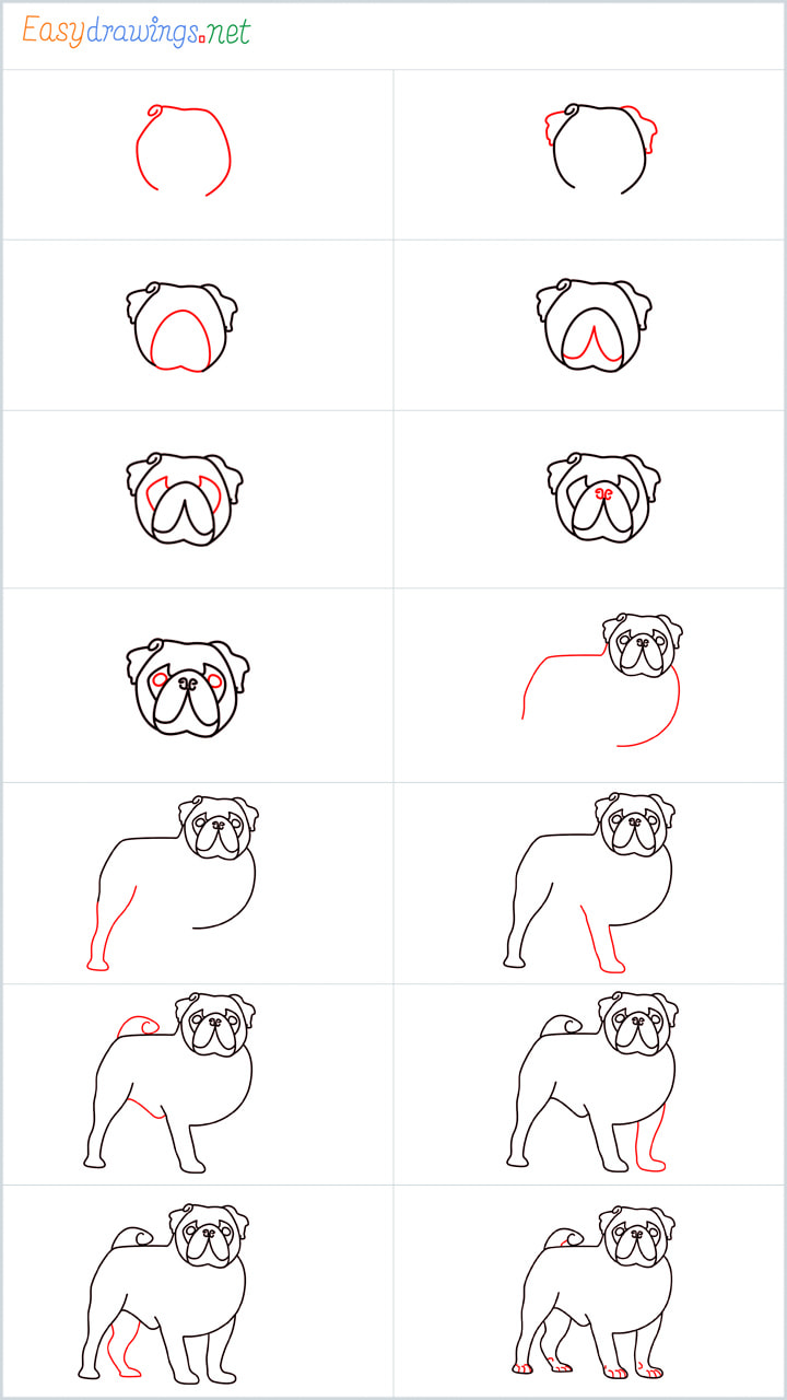 all outline for Pug drawing example