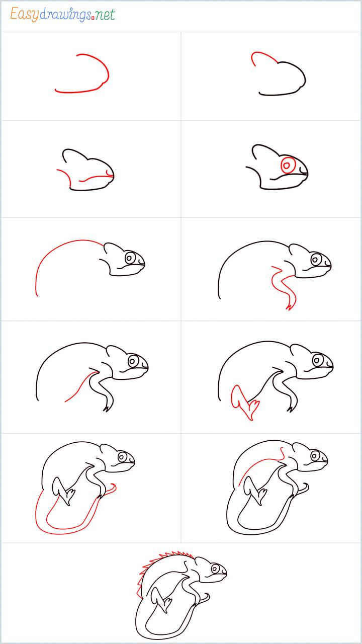 how to draw Chameleons