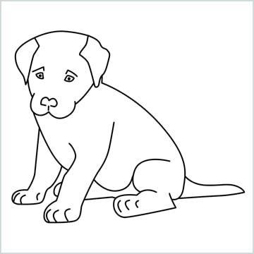 cute dog sitting drawing