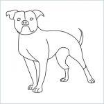 draw a Bulldog