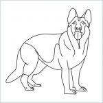 draw a German Shepherd