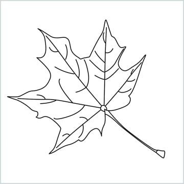 draw a fall leaf