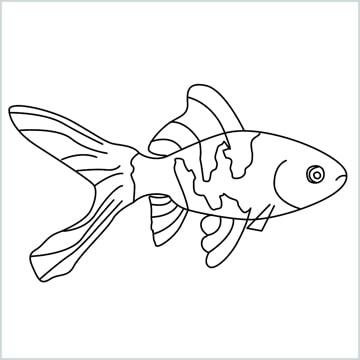 draw a goldfish