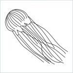 draw a jellyfish