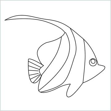 draw a spadefish