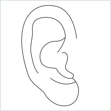 draw an Ear