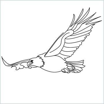 draw an eagle flying