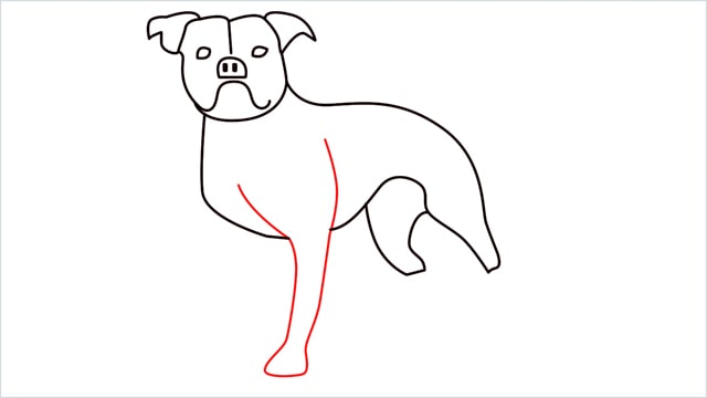 how to draw a Bulldog step (10)