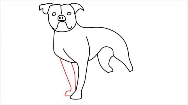 how to draw a Bulldog step (11)