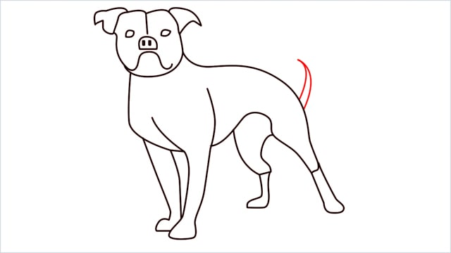 how to draw a Bulldog step (13)