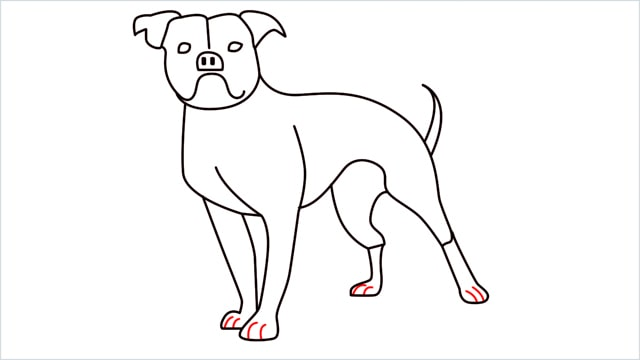 how to draw a Bulldog step (14)