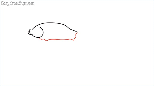 how to draw a betta fish step (4)