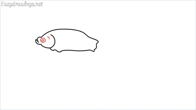 how to draw a betta fish step (5)