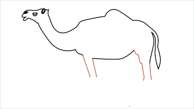 how to draw a camel step (10)