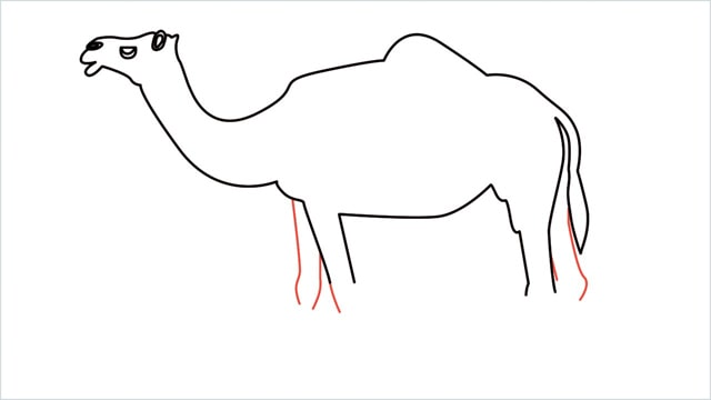 how to draw a camel step (11)