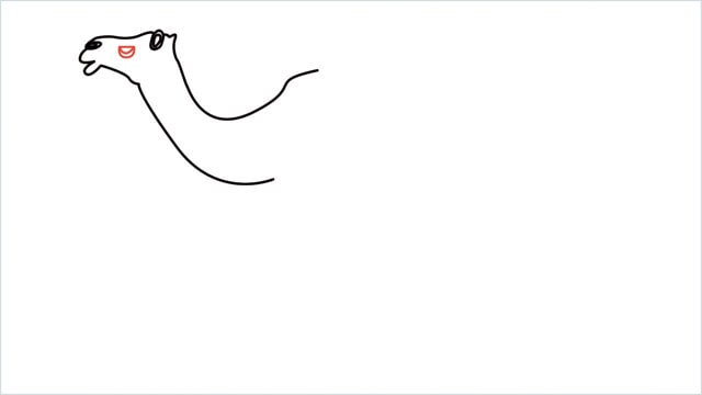 how to draw a camel step (6)