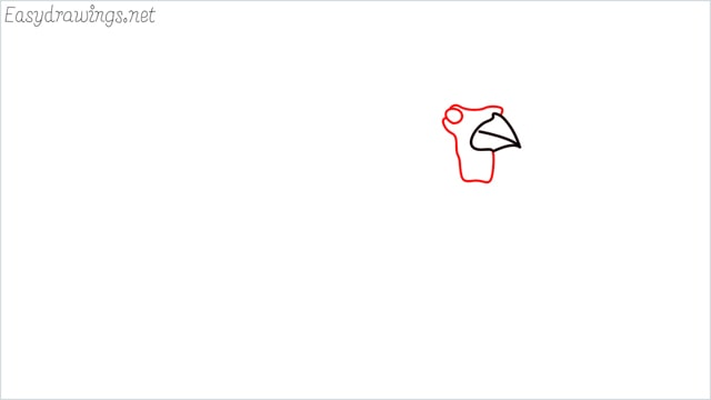 how to draw a cardinal bird step (2)